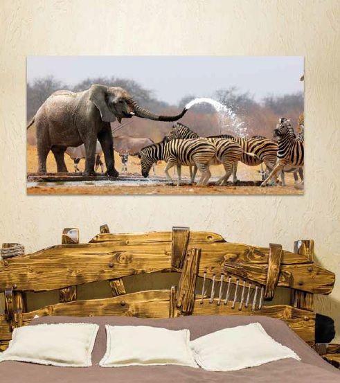 cuadros con elefantes y cebras
