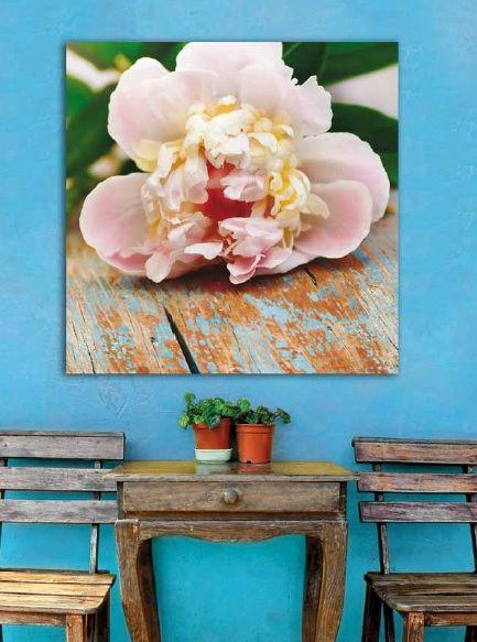 lienzos con flores