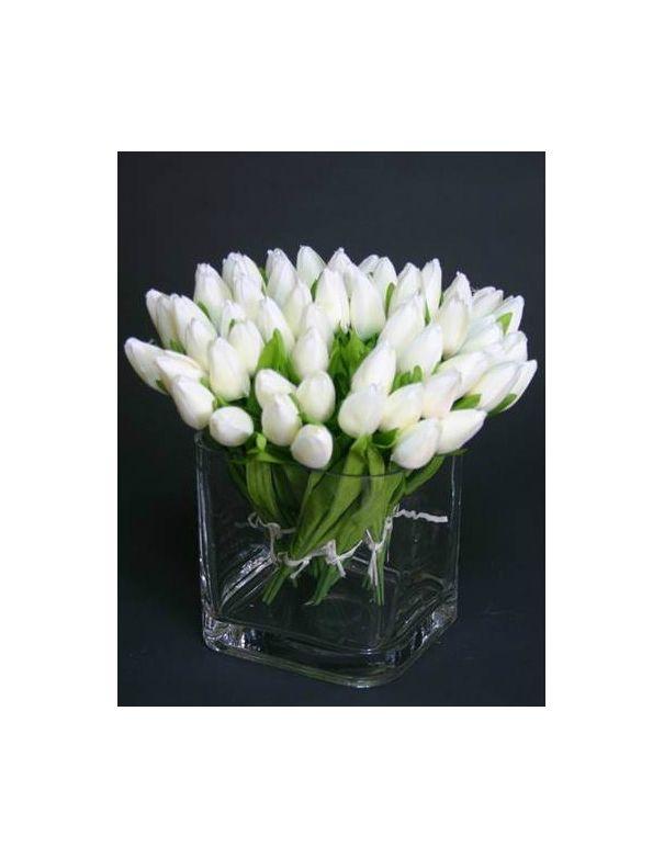 Tulipanes Blancos