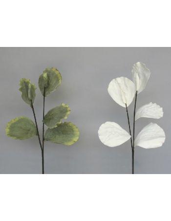 Vara Hoja Lotus Blanca